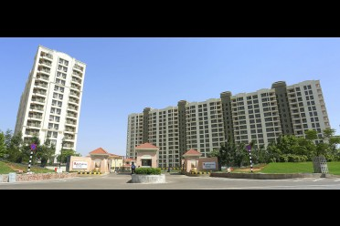 6 reasons to invest in neemrana (NCR)